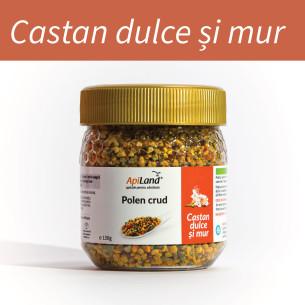 Polen CRUD Castan Dulce și Mur